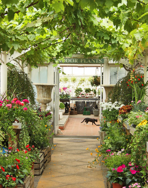 Clifton Nurseries London W9